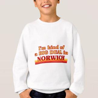 I´m kind of a big deal in Norwich Sweatshirt