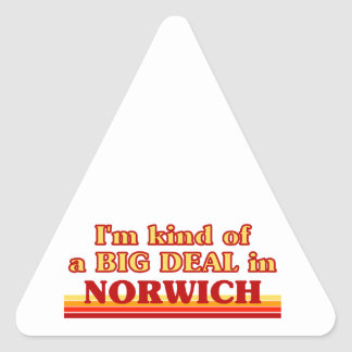 I´m kind of a big deal in Norwich Triangle Sticker