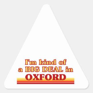 I´m kind of a big deal in Oxford Triangle Sticker