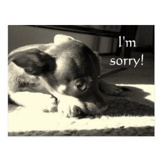 I m sorry post card