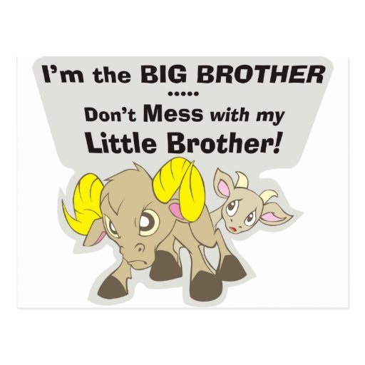 I'm the Big Brother, Don't Mess my Little Brother Post Card