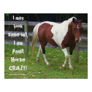 I may look sane but, I am paint horse carzy! Poster