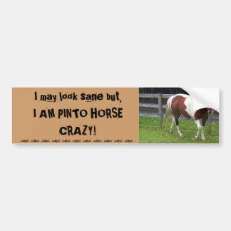 I may look sane, but I AM PINTO HORSE CRAZY! Bumper Sticker