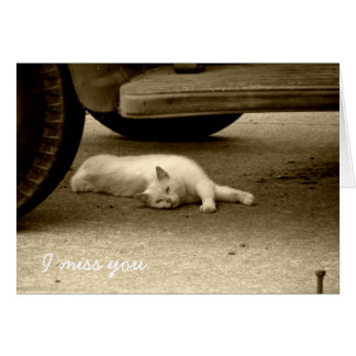 I Miss You Card - Lonely Cat