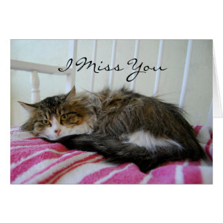 I Miss You, Maine Coon Cat Card