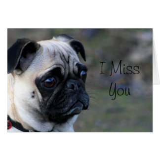 I Miss you pug greeting card