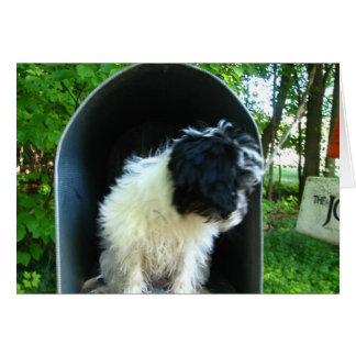 I Miss You Puppy in Mailbox Card