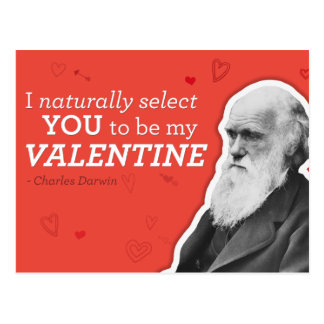 I Naturally Select You To Be My Valentine - Darwin Postcard