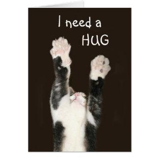 I need a hug cat card