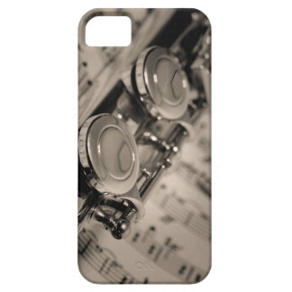 I need a muse... iPhone 5 case