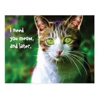 I need you meow, and later! postcard