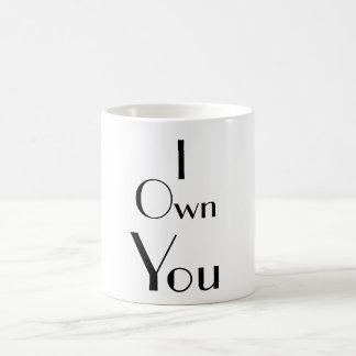 I Own You Funny Sayings Typography Coffee Mug