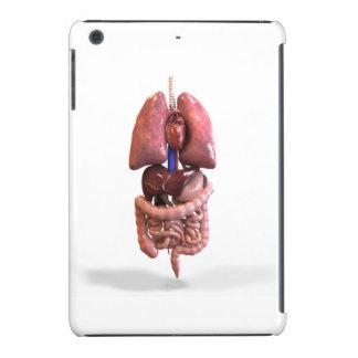 I pad mini case/cover iPad mini cases