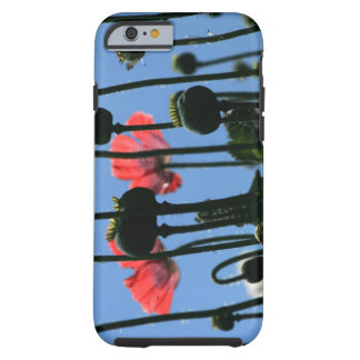 I phone poppy tough iPhone 6 case