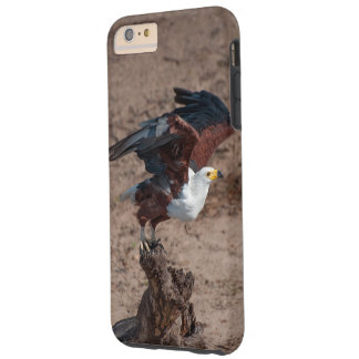 I phone S6 Protective Case with African Fish Eagle