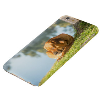 I phone S6 Protective Case with Boerboel Dog
