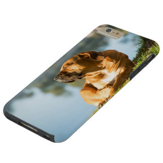 I phone S6 Protective Case with Dog by River
