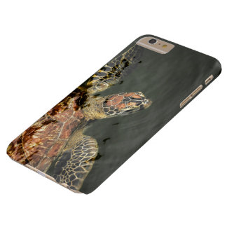 I phone S6 Protective Case with Greenback Turtle