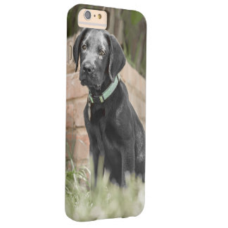 I phone S6 Protective Case with Labrador Puppy