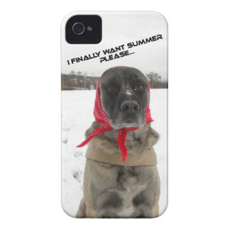 i phone wraps with kangal in the snow iPhone 4 covers