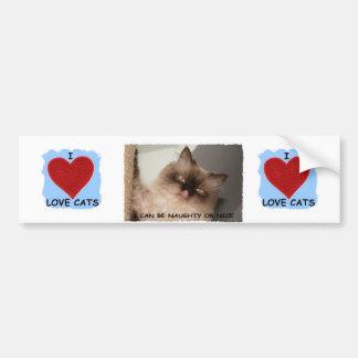 I REALLY LOVE CATS BUMPER STICKER