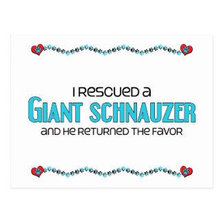 I Rescued a Giant Schnauzer (Male Dog) Postcard