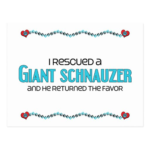 I Rescued a Giant Schnauzer (Male Dog) Postcard