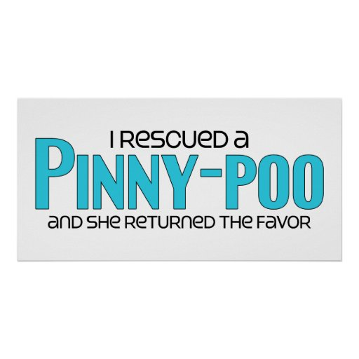 I Rescued a Pinny-Poo (Female) Dog Adoption Design Posters