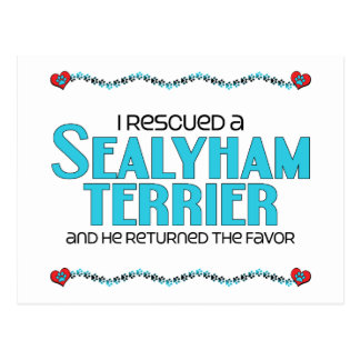 I Rescued a Sealyham Terrier (Male Dog) Postcard