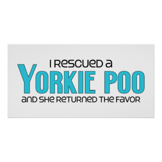 I Rescued a Yorkie Poo Female Dog Adoption Posters