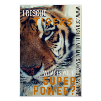 I Save Tigers Super Power Poster