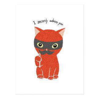 I secretly admire you Funny Cute Cat Postcard