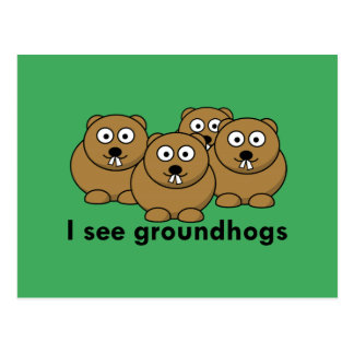 I see groundhogs postcard