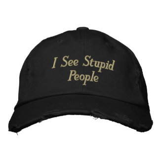 I See Stupid People Embroidered Hat