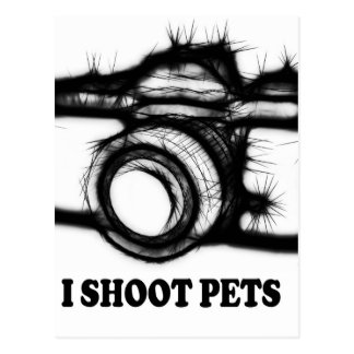 I shoot pets postcard