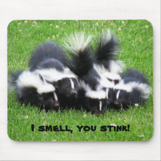 I SMELL You STINK! Mouse Pad