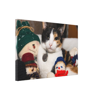 I Spy A Calico Canvas Print