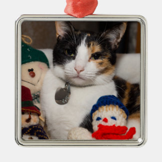 I Spy A Calico Metal Ornament