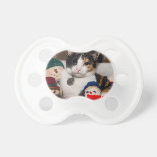 I Spy A Calico Pacifier