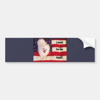 I stand for the flag bumper sticker