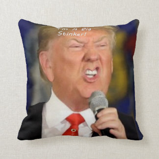 I Stink. Throw Pillow
