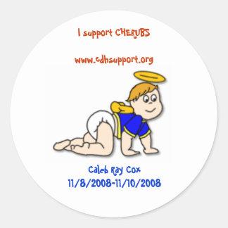 I support CHERUBS Round Sticker