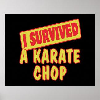 I SURVIVED A KARATE CHOP POSTER
