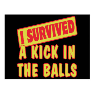 I SURVIVED A KICK IN THE BALLS POSTCARD