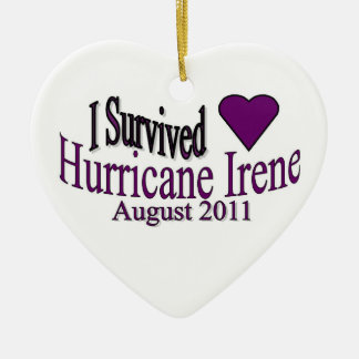 I Survived Hurricane Irene Ornament
