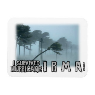I survived Hurricane Irma gloom Magnet