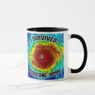 I Survived Hurricane Irma Mug