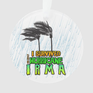 I survived Hurricane Irma Ornament