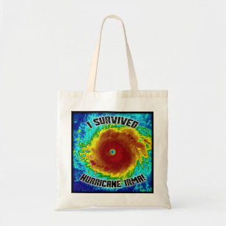 I Survived Hurricane Irma Tote
