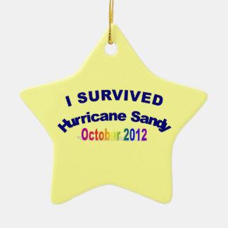 I Survived Hurricane Sandy Ornament